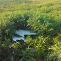 Eternit ed amianto nelle campagne