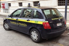 Finanzieri di Margherita di Savoia sequestrano piantagione di marijuana