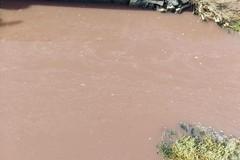 Legambiente: «Acque rosse al Canale Carmosino»