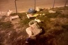 Nettezza urbana, Cusmai: «In arrivo imminente la Barsa»