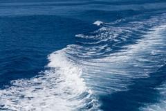 «Dati entro i limiti» per il mare di Margherita di Savoia