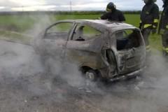 Auto in fiamme sulla statale 159, miracolosamente salvo il conducente