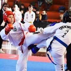 Taekwondo Itf, 28 medaglie per Vitto Team ai campionati italiani
