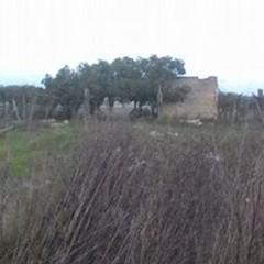 Scempio e degrado al confine di zona Cannafresca