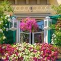 Un concorso premia i balconi fioriti più belli di Margherita di Savoia