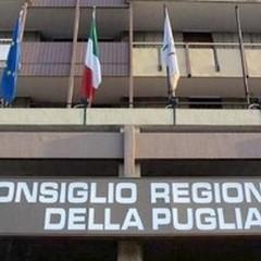 Regionali 2015: tre candidati consiglieri margheritani, l'elenco
