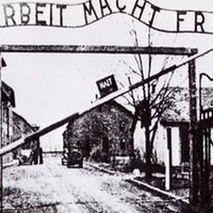 La Bat celebra la Giornata della Memoria per le vittime dell'Olocausto