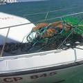 Stop alla pesca, la protesta di Coldiretti