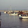 PD Margherita di Savoia: «30 euro al giorno come indennità fermo pesca»