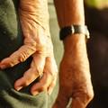 «Le mani dei contadini patrimonio dell'UNESCO», Vazapp lancia la petizione