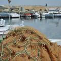 """""""Un mare di opportunità """", presentazione bandi per operatori ittici e costieri"""