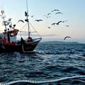 Protesta dei pescatori, in campo il comune di Margherita di Savoia