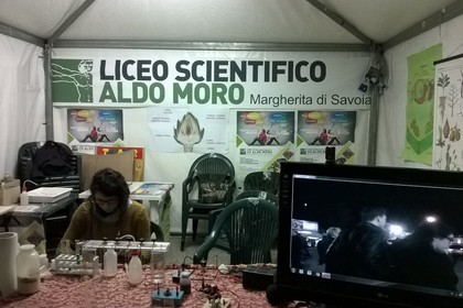Istituto Alberghiero, Liceo Scientifico