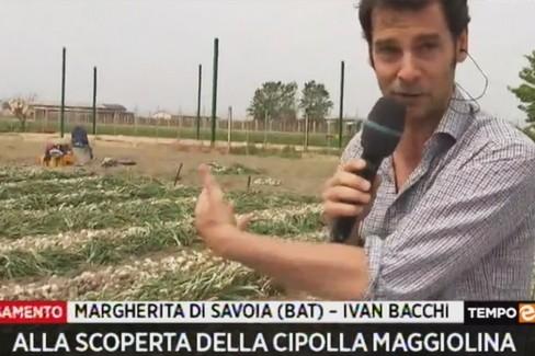 Tempo & Denaro a Margherita