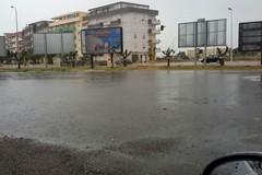 Mercato inagibile dopo la pioggia, rischio per i mancati incassi