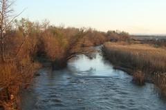 Fiume Ofanto, «grave degrado ambientale nel parco naturale»