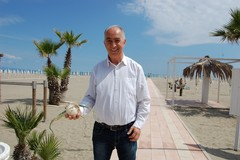 Cipolla Bianca di Margherita Igp: eletto il nuovo Consiglio del Consorzio