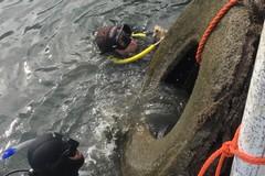 Pneumatici e rifiuti in mare, ripulito il fondale di porto canale