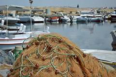Pesca, Quarta (PD): «Dl rilancio, sbloccati fondi sostegno autonomi e soci cooperative»