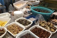 Sette quintali di pesce sequestrato dalla Guardia Costiera