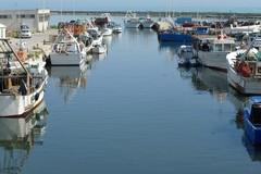 «Porto in secca, fondale troppo basso per le imbarcazioni»