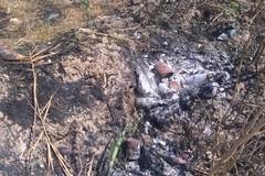Immondizia smaltita illegalmente nei terreni con Margherita