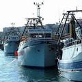 Pesca in difficoltà, Flai Cgil: «Servono aiuti per rilancio del settore»