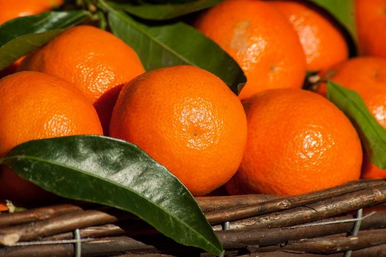 Clementine, Confagricoltura Puglia: danno drammatico per i produttori, servono interventi immediati