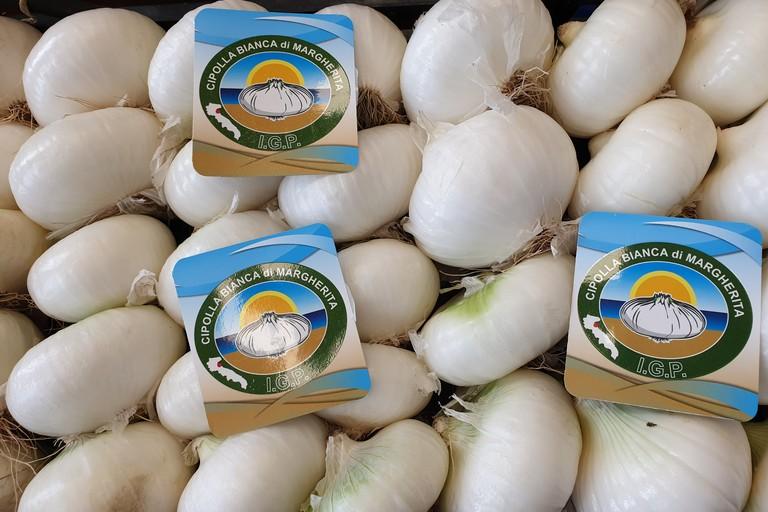 Festa della Cipolla Bianca di Margherita Igp